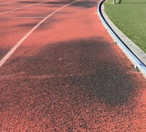 Indugest Plus Atletismo
